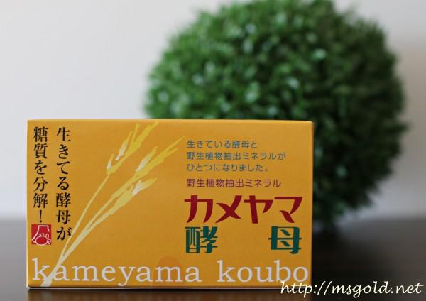 カメヤマ酵母1